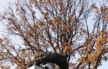 Скульптурно-архитектурный комплекс Федерального военного мемориального кладбища г. Мытищи Московской обл