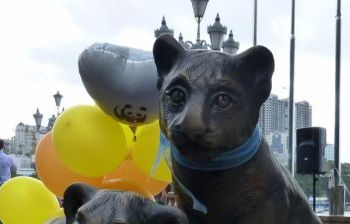 Тигрята. г. Владивосток
